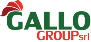 Gallo Group Srl